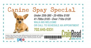 2014 Canine Spay Coupon
